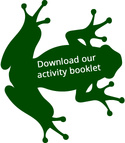 Lemur Leaf frog symbol with Download our activity book strapline